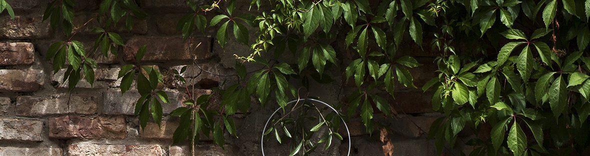 Sommertafel - mit ganz viel Grün -