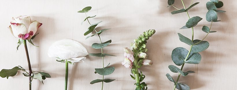 Saisonwechsel - frische dein Zuhause mit neuen Ideen auf!